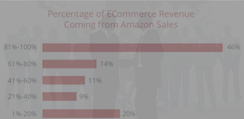 percentage of Ecommerce revenue coming form Amazon sales